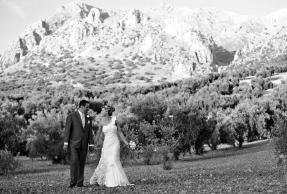 amazing wedding planners
